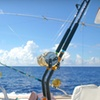 Up to 41% Off Fishing Trips in Galveston