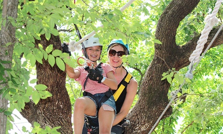 $22 for an Aerial Adventure Course Experience at Trinity Forest Adventure Park (Up to $44.95 Value)