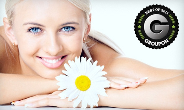 Skin & Beauty Lounge - Brooklawn - St. Vincent: Four, Six, or Eight Microdermabrasion Treatments at Skin & Beauty Lounge in Bridgeport (Up to 74% Off)