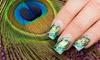 Up to 54% Off Mani-Pedi, Shellac Manicure, or Nail Art