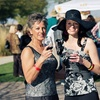 Up to Half Off Cooking Expo and Wine Tasting