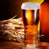 Half Off from Travels in Beer Tours
