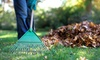 The Lawndromat - Winnipeg: Two or Four Hours of Yard Cleanup from The Lawndromat (Up to 67% Off)