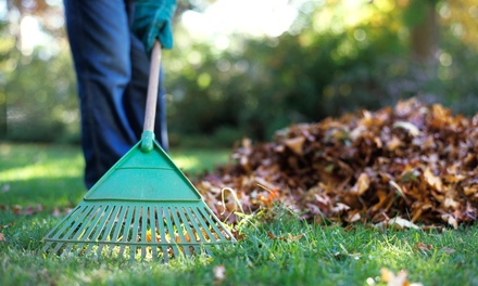 Two or Four Hours of Yard Cleanup from The Lawndromat (Up to 67% Off)