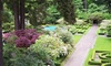 Lakewold Gardens - Lakewood: Individual or Friends & Family Membership to Lakewold Gardens (Up to 43% Off)