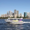51% Off Whale Watching Experience