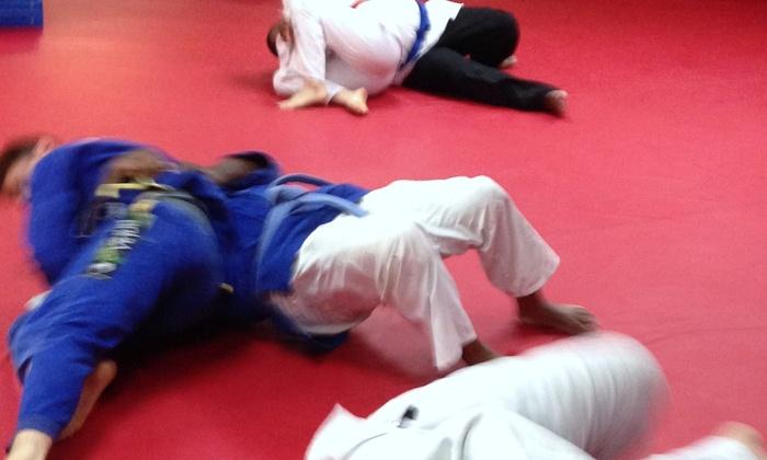 Brachs MMA LLC. - Voorhees: Four Weeks of Unlimited Brazilian Jiu-Jitsu Classes at Brachs Mma Llc. (86% Off)