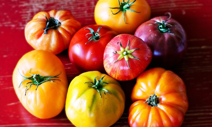 Bella Organic Farm - Sauvie Island: $20 for a 10-Pound Box of Fresh Certified Organic Heirloom Tomatoes at Bella Organic Farm ($40 Value)