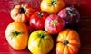 Bella Organic Pumpkin Patch - Sauvie Island: $20 for a 10-Pound Box of Fresh Certified Organic Heirloom Tomatoes at Bella Organic Farm ($40 Value)