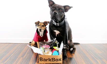 One-, Three-, or Six-Month Subscription for Monthly Delivery of Dog Goodies from BarkBox ( 38% Off )
