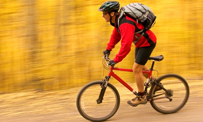 Biking Day Trip - Chelsea: Bike the Lehigh River Gorge Rail Trail with Round-Trip Transportation (Up to 40% Off)