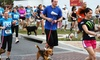 The Continuum 5K-9 - Pledge 5 Foundation: The Continuum 5K-9 Entry for One or Two on Saturday, March 14 (Up to 53% Off)