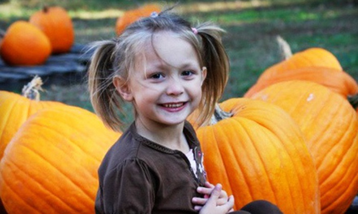 Priddy Farms - Bartlett: $14 for Autumn Outing with Hayride, Train Rides, and Pumpkins for a Family with Two Kids ($21 Value)