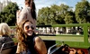 Premium Tours - London: Vintage Open Top Bus Tour with Private River Cruise with Premium Tours (Up to 65% Off)