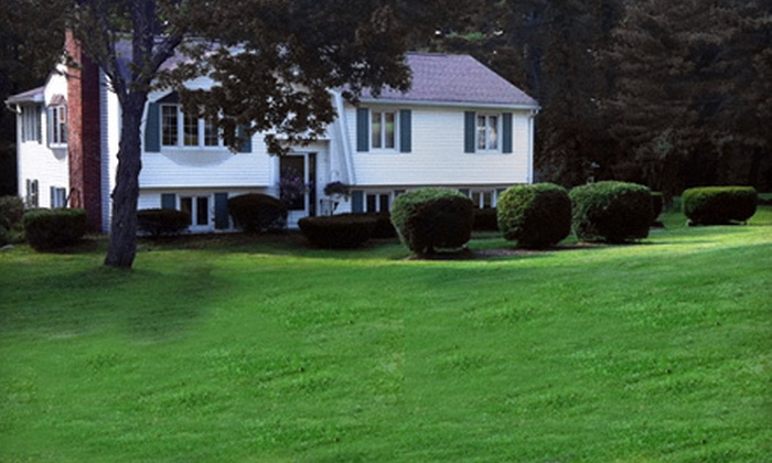 E.S. Landscaping - Worcester: Mowing and Thatch Removal for a Regular or Overgrown Lawn from E.S. Landscaping (Half Off)