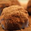 Half Off Fine Chocolate at George Paul Chocolates