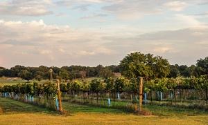 Texas Hill Country Villas amid Vineyards