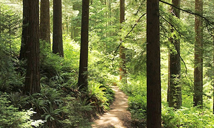 Hoyt Arboretum - Arlington Heights: One-Year Maple, Oak, or Fir Membership at Hoyt Arboretum (Half Off)
