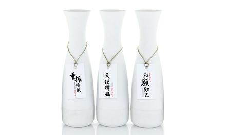 Stimula Male Sake Masturbator Bottle