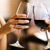 51% Off WIne or Beer Festival