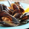 Half Off Seafood at Griff's Landing in Frederick