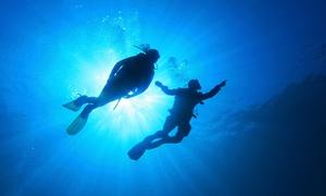 Corderia Nazionale: Corso di sub PADI teorico con uscita di pratica in mare per 1 o 2 persone da Corderia Nazionale (sconto fino a 91%)