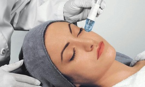 Belle D's Skin Care: Up to 76% Off Microdermabrasion with Facial at Belle D's Skin Care