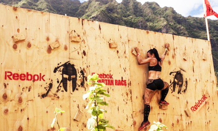 Spartan Races - Vail Lake Resort: $55 for Entry & Spectator Pass to  SoCal Spartan Sprint on Sunday, January 18 (Up to $120 value)