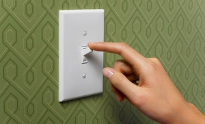 Speedy Electric: $1,995 Electrical Panel Swap-Out from Speedy Electric ($2,700 Value)