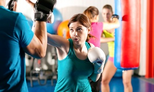 AmeriKick: 10 or 20 Kickboxing Classes at AmeriKick (Up to 89% Off)