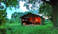 UK: 3 or 4 Night Glamping For Up to Six at Choice of Feather Down Farms