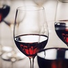 55% Off Wine Class or Tastings at Wine Outlet