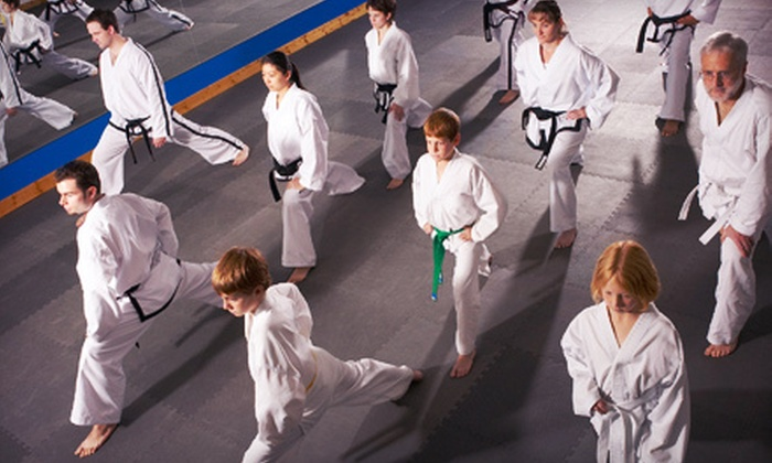 YH Park Taekwondo - Levittown: $49 for One Month of Tae Kwon Do Classes and a Uniform at YH Park Taekwondo in Levittown ($250 Value)