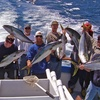 Up to 54% Off Deep Sea Fishing Trip at Freelance Ocean Tours