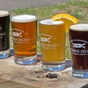 50% Off Brewery Tour with Tastings