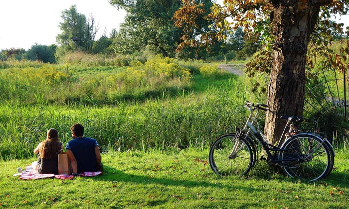 Niagara Getaways - Virgil store location: Five-Hour Bicycle and Wine Tour for Two or Four at Niagara Getaways (Up to 53% Off)