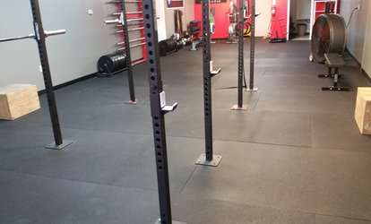 image for $30 for $120 Worth of Services — Elite713 Strength & Conditioning