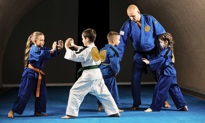 Power Martial Arts - Boulder Hill: 10 Martial-Arts Classes or 1 Month of Martial-Arts Classes at Power Martial Arts (Up to 68% Off)