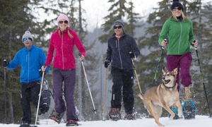 Ski Callaghan: CC$16 for Snowshoeing Passes for Two Adults at Ski Callaghan (CC$30 Value)