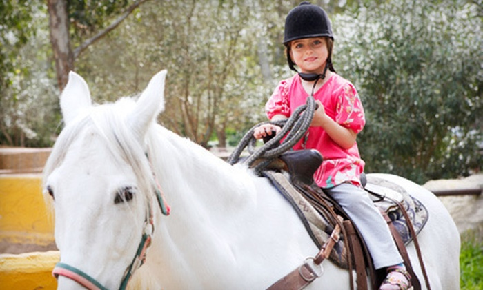 Flip Flop Farm - Sunshine Parkway: One or Two 60-Minute Private Horseback-Riding Lessons at Flip Flop Farm in Wellington (Up to 55% Off)