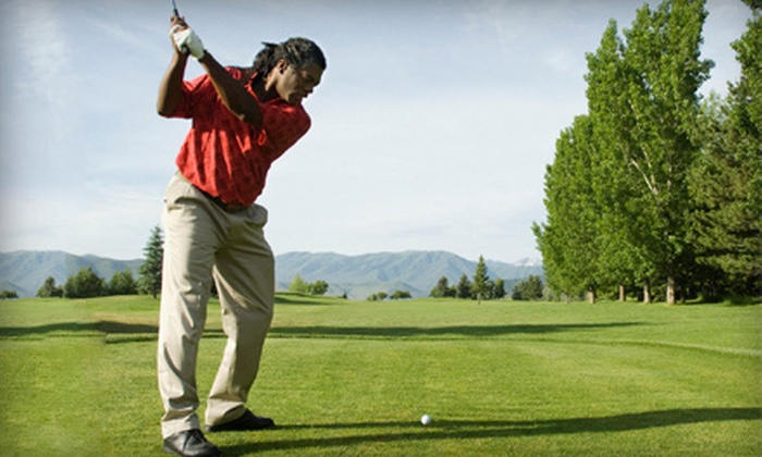 Reason's Golf Academy - Evolution Sportsplex: 1 or 2 60-Minute Beginner Private Lessons or 3 60-Minute Advanced Lessons at Reason's Golf Academy (Up to 74% Off)