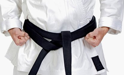 $50 for $100 Worth of Martial-Arts Lessons at The Martial Arts House