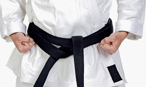 The Martial Arts House: $50 for $100 Worth of Martial-Arts Lessons at The Martial Arts House
