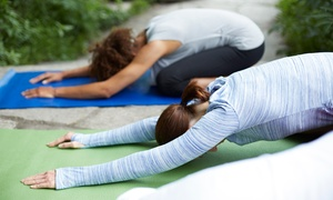 Yogabliss: Eight-Class Introduction to Yoga Series or One Month of Unlimited Yoga Classes at Yogabliss (Up to 44% Off)