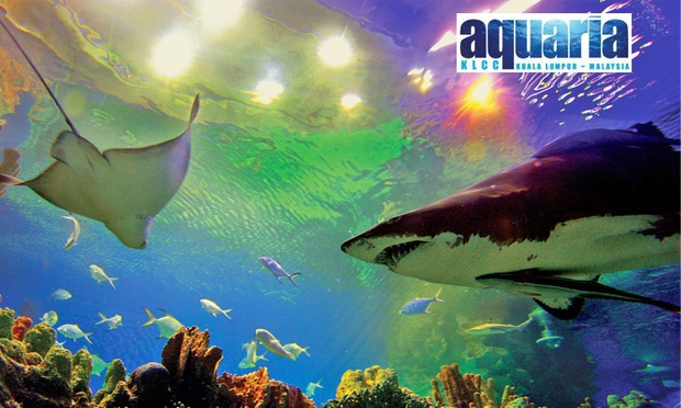KLCC Single-Entry Admission Ticket to Aquaria KLCC