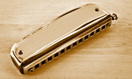 Harmonica Online Course from JD Courses (Up to 95% Off)