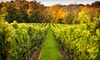 Barrel Wine Tours - Multiple Locations: $89 for a Six-Hour Boutique Wineries of Washington Tour with Lunch and Tastings from Barrel Wine Tours ($199 Value)