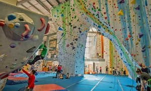 Central Rock Gym: One-Month Rock Climbing Package at Central Rock Gym (Up to 51% Off)