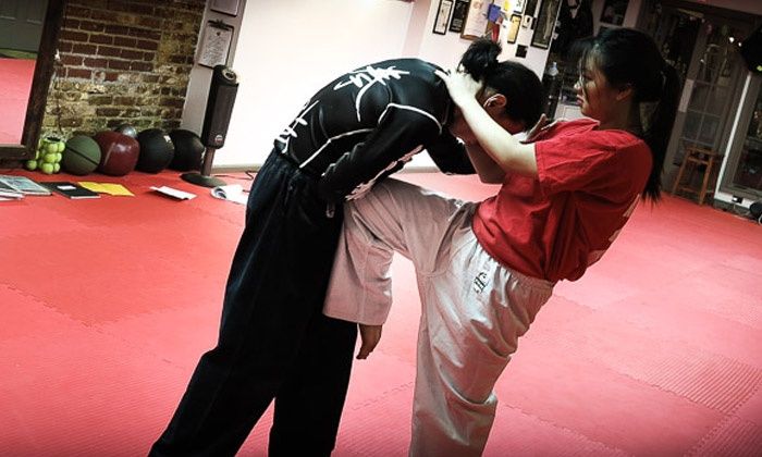 Chinese Hawaiian Kenpo Academy - New York: 5 or 10 Classes or One Month of Unlimited Classes at Chinese Hawaiian Kenpo Academy (Up to 80% Off)