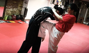 Chinese Hawaiian Kenpo Academy: 5 or 10 Classes or One Month of Unlimited Classes at Chinese Hawaiian Kenpo Academy (Up to 80% Off)